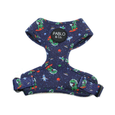Pablo & Co. Space Dinos Adjustable Harness