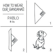 Load image into Gallery viewer, Pablo & Co. Ya Filthy Animal Bandana