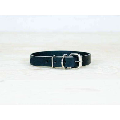 ROMAN Dog Black Collar