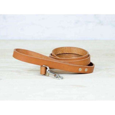 ROMAN Dog Tan Leash