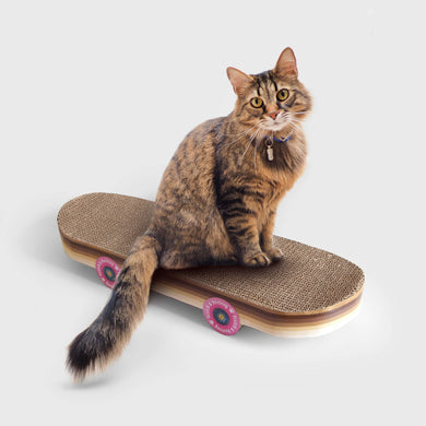 Suck UK Skateboard Cat Scratcher