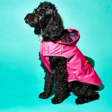 Ware of the Dog Color Block Rain Coat-Pink/Burgundy