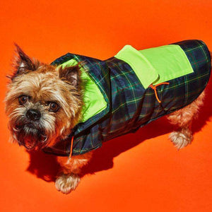 Ware of the Dog Plaid Puffer Jacket-Green Multi/Yellow
