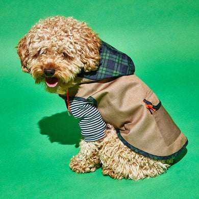 Ware of the Dog Plaid Trim Rain Coat-Tan