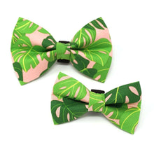 Load image into Gallery viewer, Winthrop Clothing Co. Monstera Bowtie