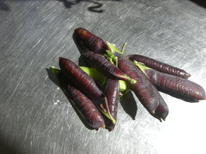 Purple podded peas! yum