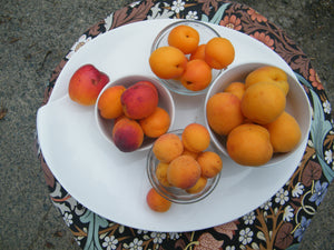 You can never have too many apricots
