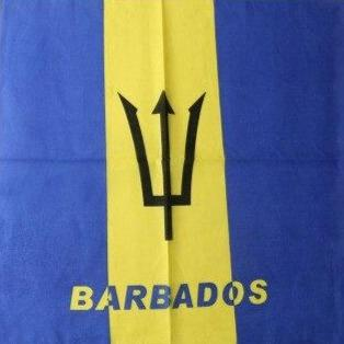 Barbados Flag Bandana
