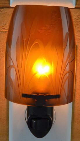 Glass night light - Brown Willow with Dragonfly