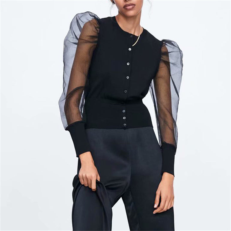 Long puff Sleeve Stretchy transparent Blouse