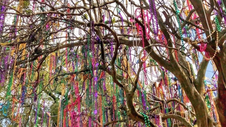 New Orleans Mardi Gras Bead Tree