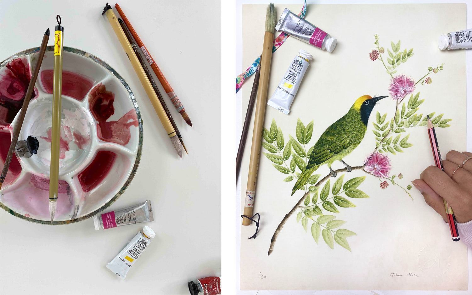 Chinese paintbrudhes and watercolours; an original hand painted golden fronted leaf bird