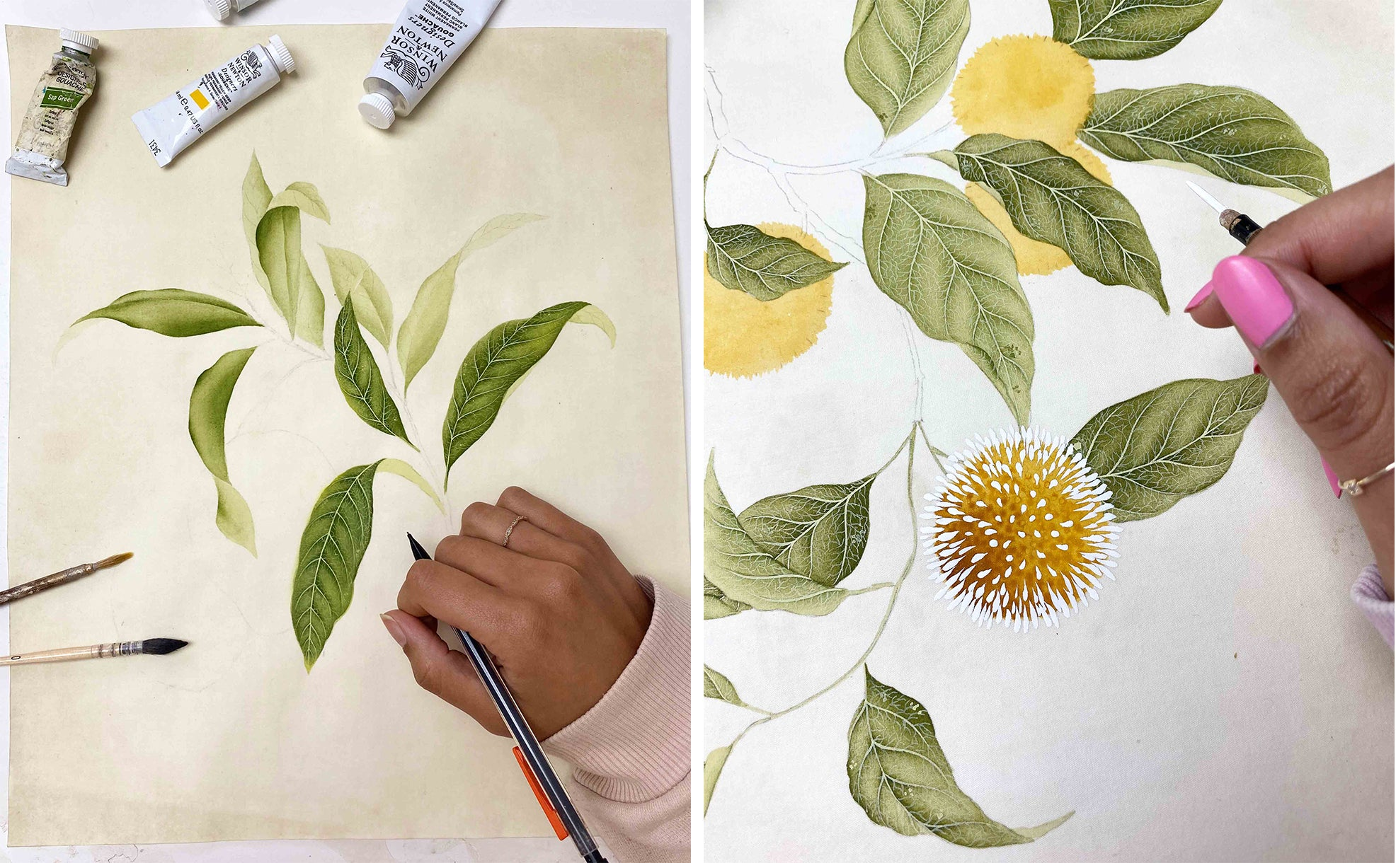 Diane Hill painting the botanical collection work in progress