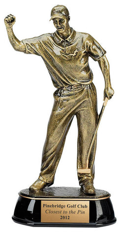 Golf Trophy - Celebration Golfer (A2587) - Quest Awards