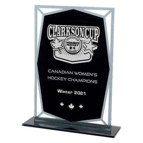 Cape Spear Black & Spear Glass Award (A3705)