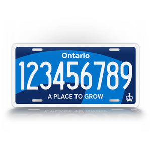 Custom Text New Ontario 2020 Novelty License Plate