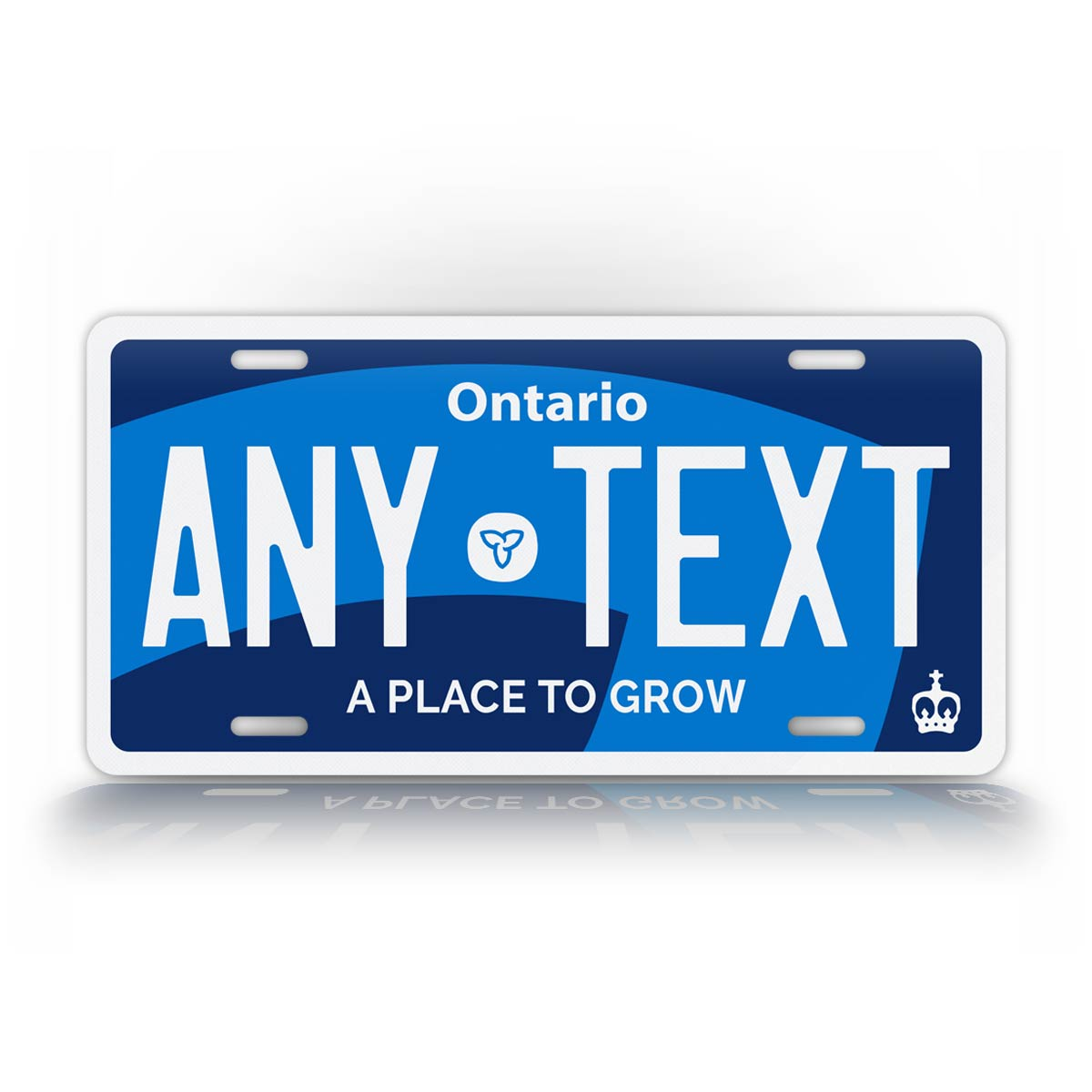 Custom Text Ontario Novelty License Plate