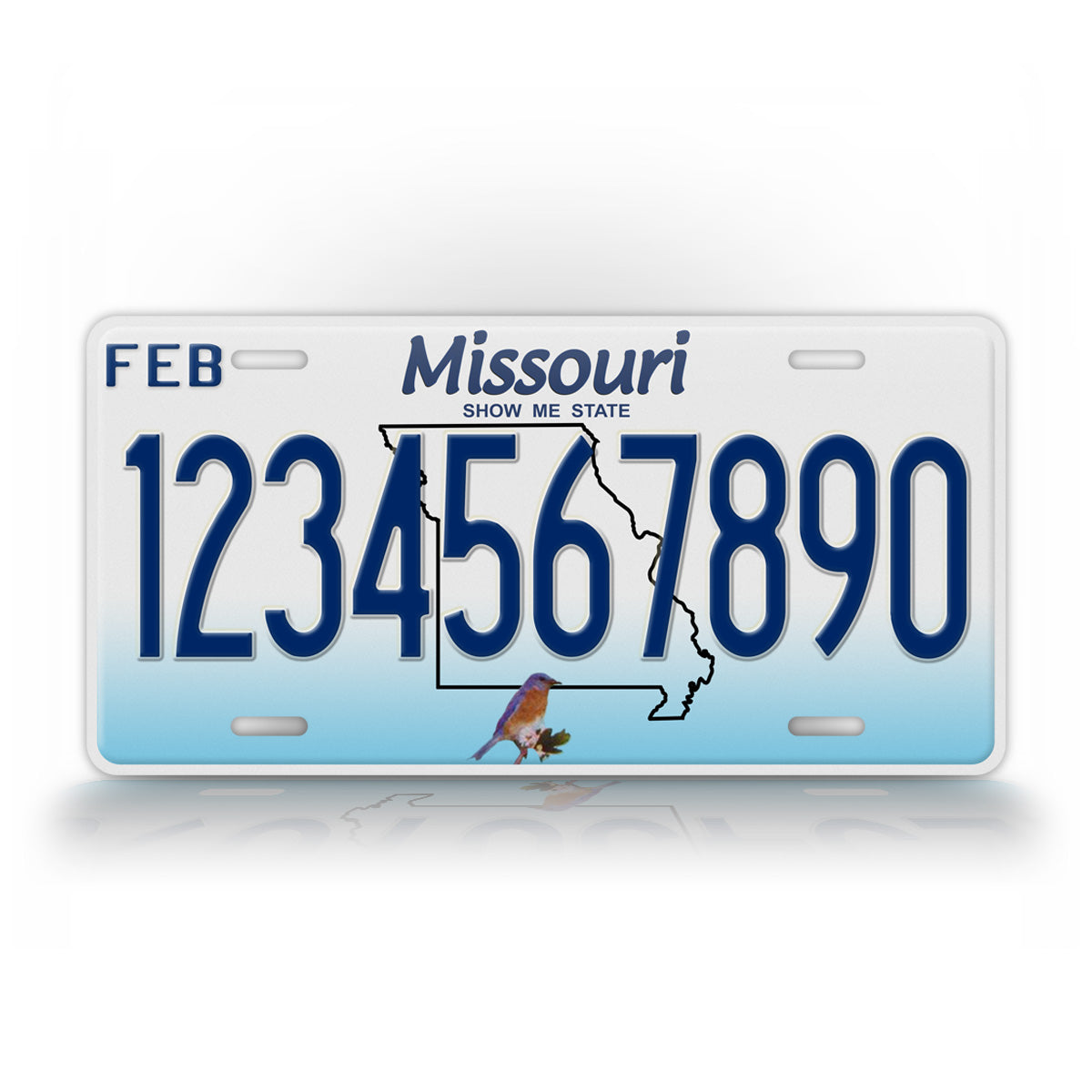 Personalized Missouri State License Plate