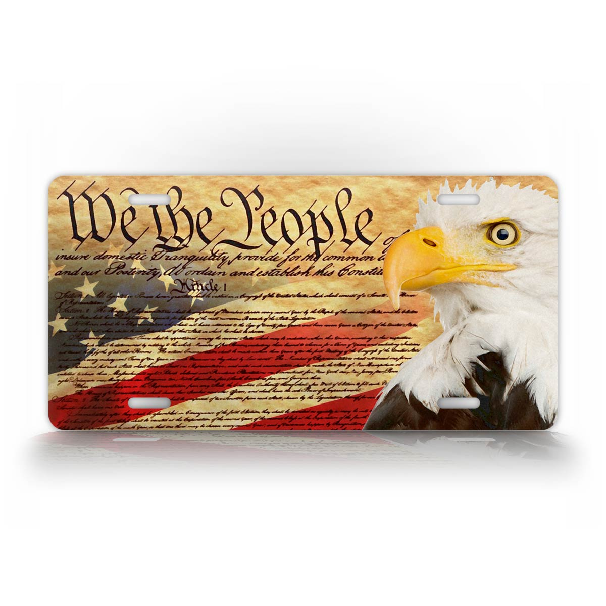 We the People Patriotic License Plate