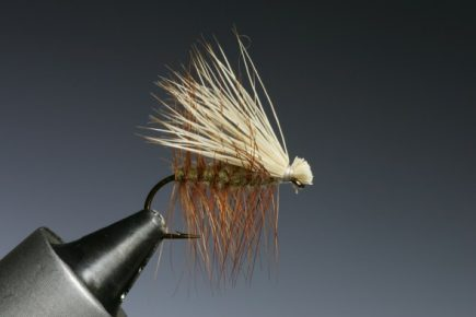 The Elk Hair Caddis