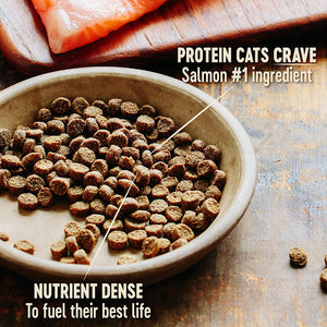 Wellness CORE Natural Grain Free Dry Cat Food - (Indoor)