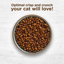 Load image into Gallery viewer, Rachael Ray Nutrish Dry Cat Food