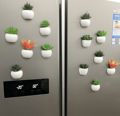 Magnetic Flower Vase for Fridge - Dealslicks