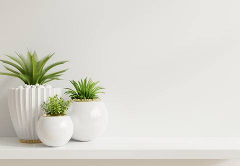 Planters for herbs, Pots to grow herbs