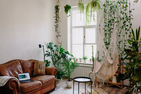 Hanging Planter & Table Planters