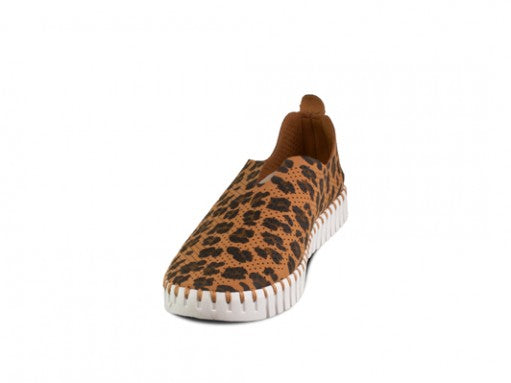 Animal Print Flat - Sonia's Runway