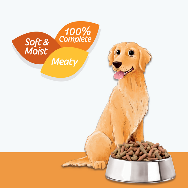 Bowl of HiLife Feed Me Dry Dog Food with Turkey and Chicken minced pieces