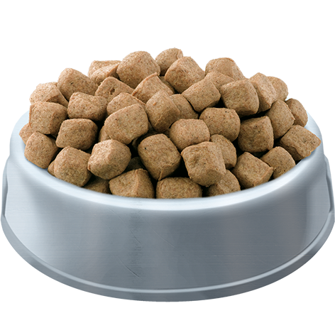 PETS PANTRY from HiLife Complete Meaty Chunks with Tasty Chicken