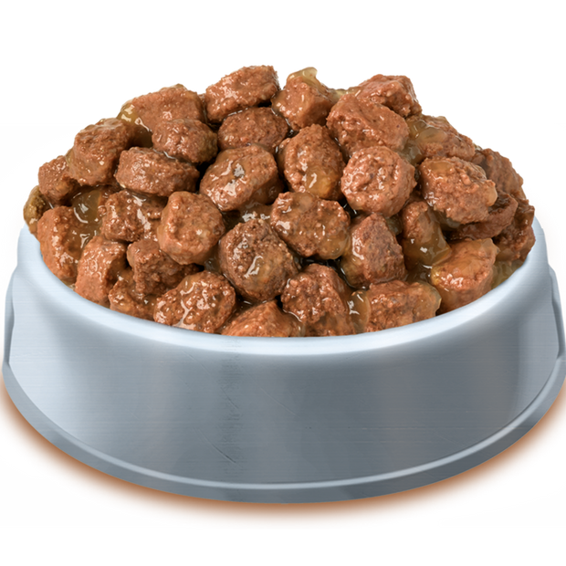Bowl of Pets Pantry from HiLife Meaty Chunks in gravy pouch dog food
