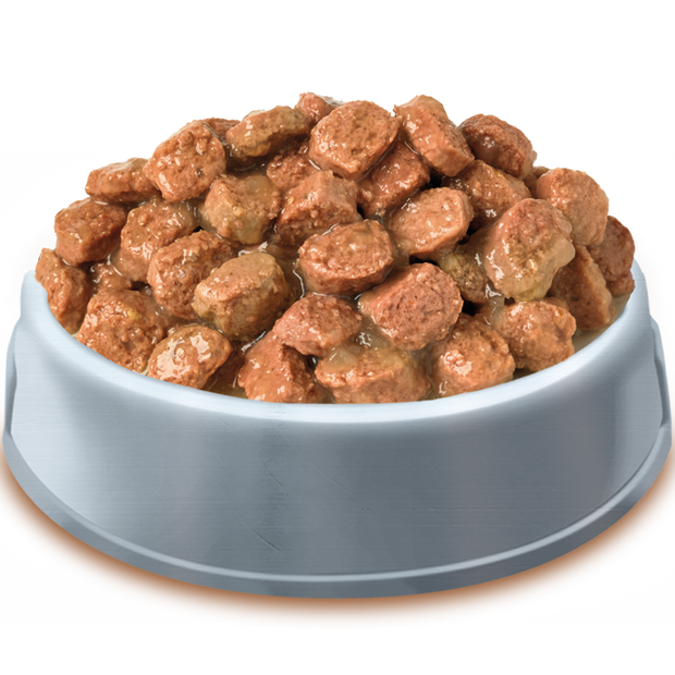 Bowl of Pets Pantry from HiLife Meaty Chunks in jelly pouch dog food