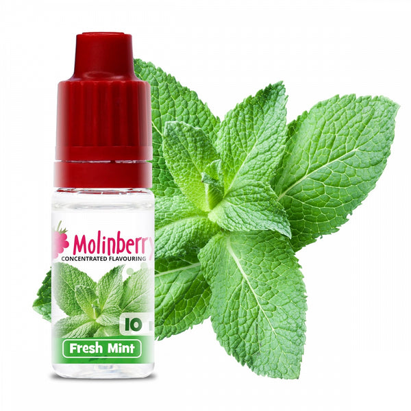 Molinberry Fresh Mint – 30ml