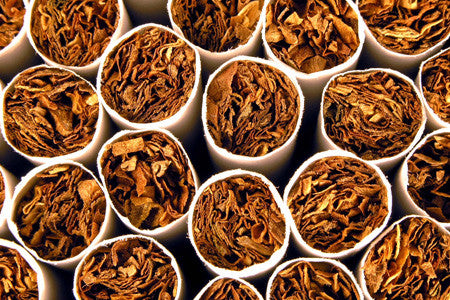 Evening Tobacco