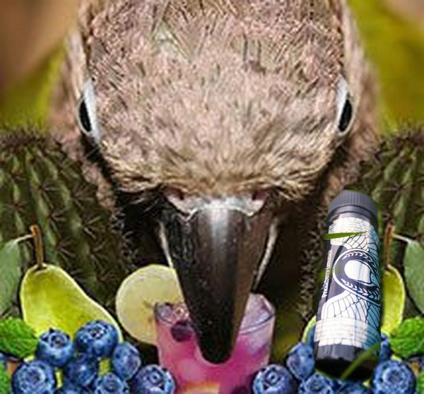 Bird E-Liquid - Prickleberry Lemonade