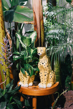 DOIY URBAN JUNGLE YELLOW CHEETAH PLANT POT