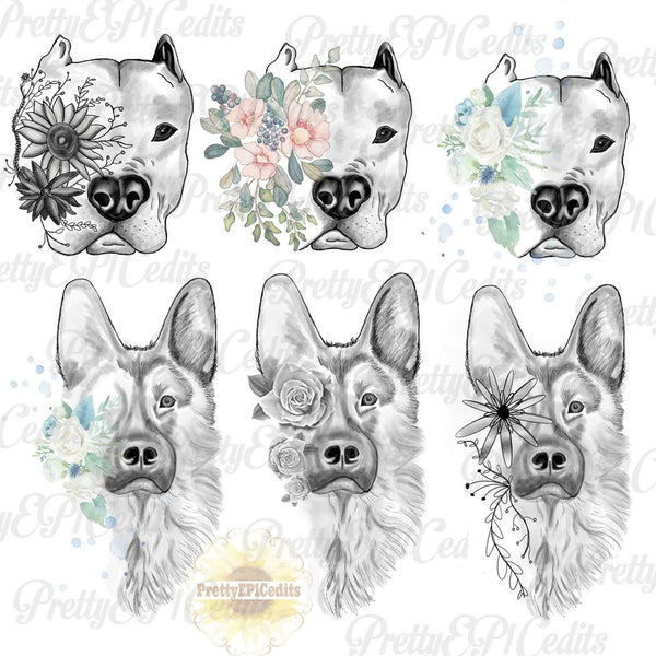 dog sketches 6 PNG File Bundle Special (Limited Time)