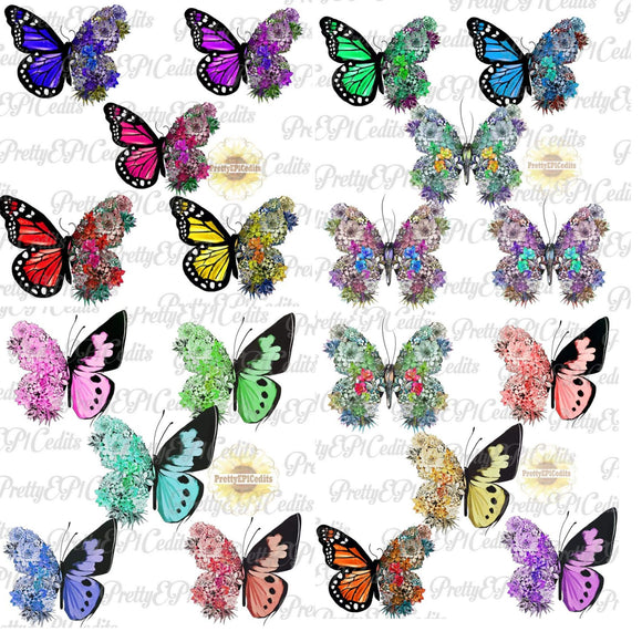 Succulent Butterfly 20 PNG File Bundle Special (Limited Time)
