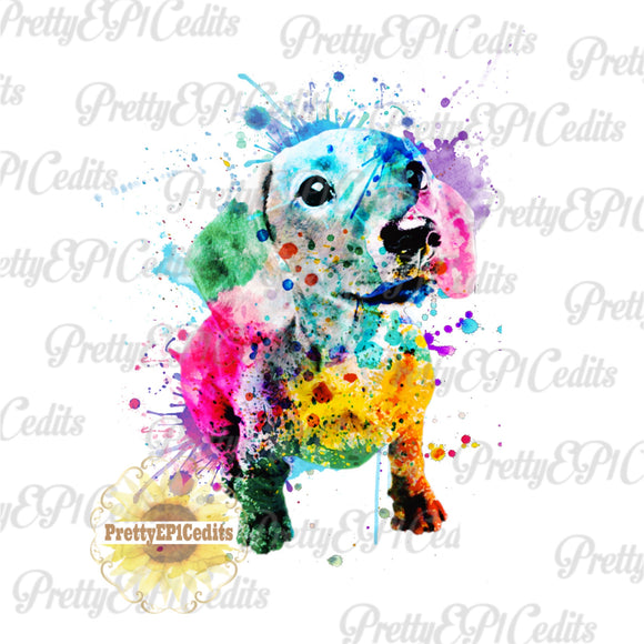 watercolor weiner dog, watercolor dog, digital download,clip art, PNG, JPG