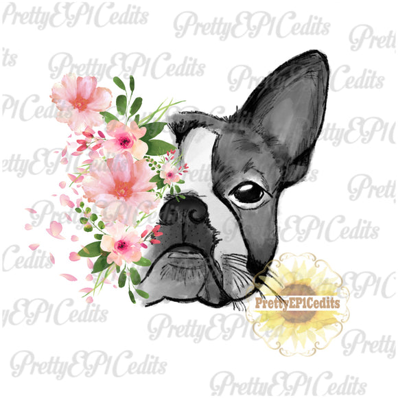 boston, dog woth flowers, digital download,clip art, PNG