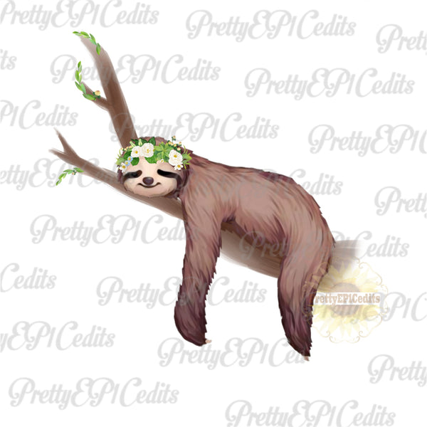 sloth, boho sloth, sloth on branch, digital download,clip art, PNG