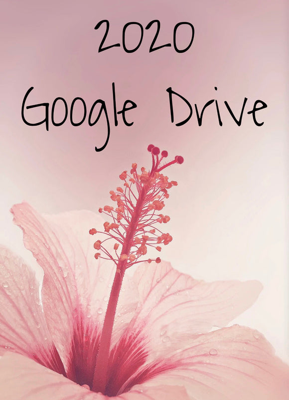2020 Google Drive File Access. READ FULL DESCRIPTION
