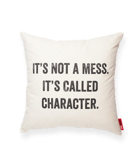 "Decorative Throw Pillow ""It's Not A Mess"""