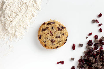 Oatmeal Cranberry Dark Chocolate