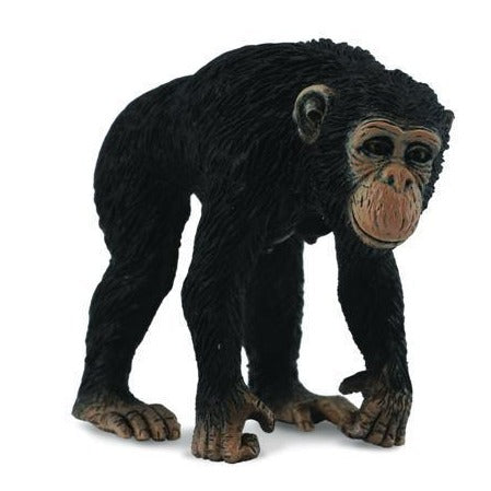 Chimpanzee Female (M) - CollectA