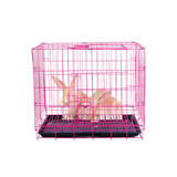 cage lapin rouge