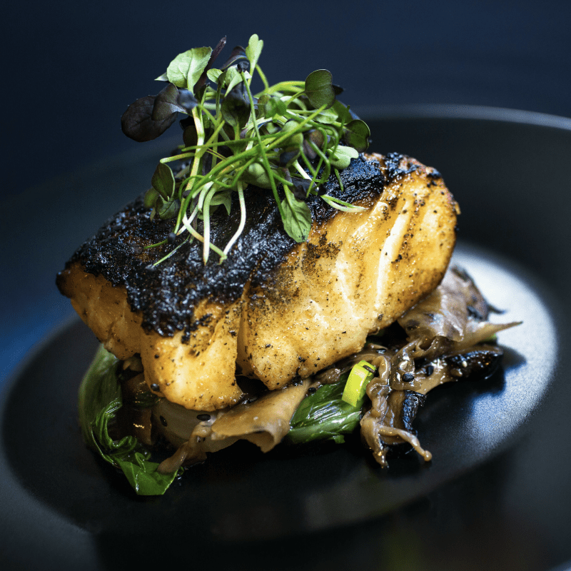 North Atlantic blackened miso cod