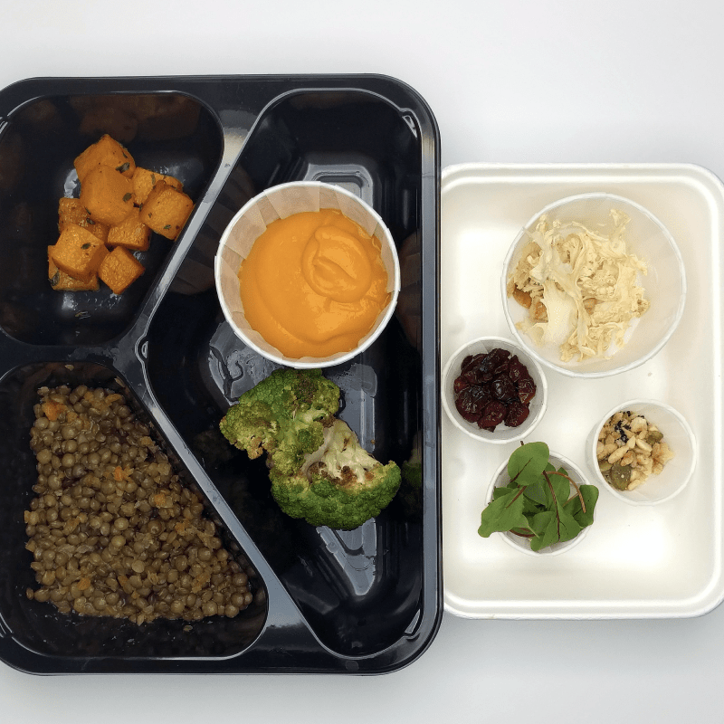 Spiced Coconut and Butternut Puree kit